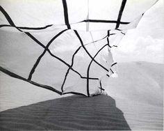 """Eugenio Espinoza.""""Impenetrable en el paisaje"""" 1972 *Con la colaboracion de Claudio Perna."""