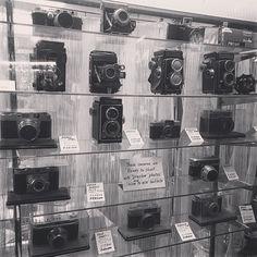 #фотоновинки #фото #техника #фототехника #фотоаппараты #съемки #съемка #фототур #фототуры #Япония