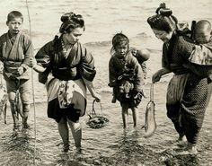 thekimonogallery:  Fishing on the shores of Japan. 1904-1905 by photographer Julian Cochrane.