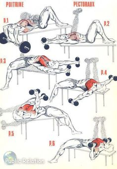 bodybuilding Chest Workout Exercise http://uthinkbig.blogspot.com/2015/09/chest-excersice-free-tips.html