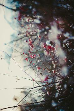 January 9, 2013. (by Steffi Au)