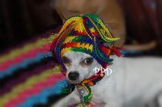 1a188bc2dfb Squiggles Dog Hat - Custom made. Dog Beanie