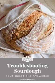 Troubleshooting Sourdough: Your Questions Answered #sourdoughproblems #sourdoughfail #sourdoughtips