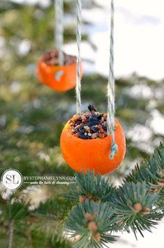 reciclar pieles de naranja para hacer comederos para pájaros                                                                                                                                                     Más