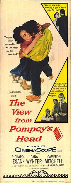 The View from Pompey's Head (1955)Stars: Richard Egan, Dana Wynter, Cameron Mitchell, Sidney Blackmer, Marjorie Rambeau, Jerry Paris ~  Director: Philip Dunne