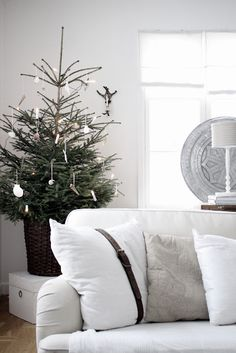 pine tree display in woven basket, white accented decor; throw pillow with buckled leather.
