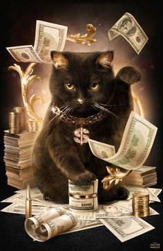 this cat is all about gold and fat stacks. #pawesome