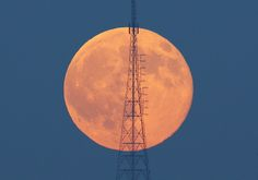A full moon, known as the Blue Moon, rises behind a telecommunication tower over the Camlica Hill in Istanbul, Turkey, July REUTERS/Murad Sezer Sky Moon, Moon Rise, Blue Moon Rose, Full Moon Rising, Strange Music, Weird Music, Moon Calendar, World 7, The Far Side