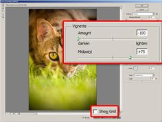 lomography tutorial in photoshop