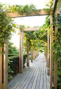 Beautiful planted walkway