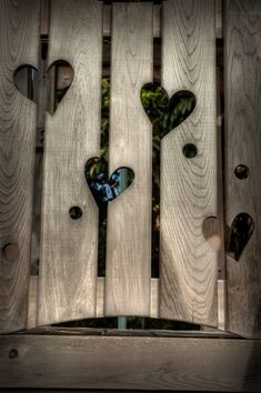 "Hearts in wood by Noah Katz: ""This pic was taken at the Garden of the Groves on Grand Bahama Island."" 