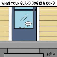 When your guard dog is a corgi