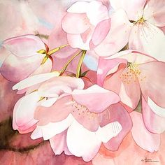 Cherry Blossoms by Maud Durland