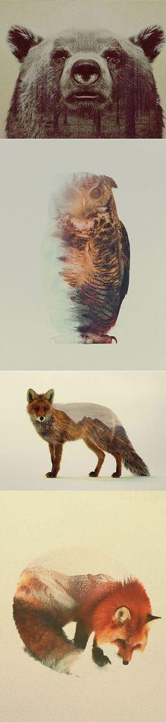 Dobles animales