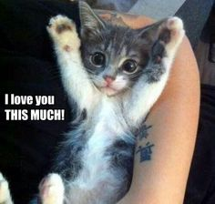 I love you THIS much!