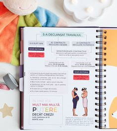 Pregnancy Planner, Bullet Journal, Joy, How To Plan, Day Planners, Being Happy