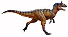 Cryolophosaurus was a medium-sized theropod from the early Jurassic period. Its name means'frozen crested lizard'. Cryolophosaurus was a vicious, agile predator. Its unique feature is the crest shaped like a Spanish Comb. It was too fragile to be protective, but instead it may have been used during mating season. Crests have also been featured on Dilophosaurus and Monolophosaurus. Cryolophosaurus appears in Warpath: Jurassic Park, as it is one of the six unlockable dinosaurs, as it can be...