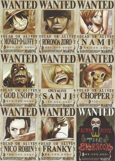 6dab1cec18f What do straw hat pirates have in common  They re all wanted One Piece