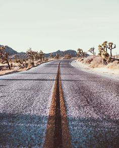 brcarr: Joshua Tree by Bryan Rodner Carr Desert Dream, Desert Life, Paros, Joshua Tree National Park, National Parks, U2 Poster, Destinations, On The Road Again, That Way