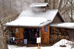 maple sugar scenes | Adding a Burden: One morning in the sugar bush