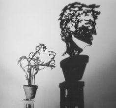 Diet Wiegman: Sombras de arte
