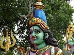 Dual Color Shiva!