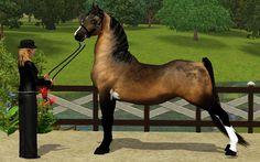 Sims 3 Saddlebred stallion