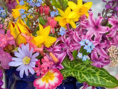 Spring flowers wallpapers httpwallpaperzoospring flowers spring flowers wallpapers httpwallpaperzoospring flowers wallpapers 19128ml springflowers wallpaper pinterest spring flowers mightylinksfo