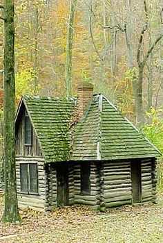 Moss Covered Cabin