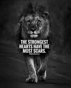 65 Positive Thinking Quotes And Life Thoughts 41 Lion Quotes, Wolf Quotes, Wisdom Quotes, Scar Quotes, Quotes With Lions, Quotes About Scars, My King Quotes, Qoutes, Short Inspirational Quotes