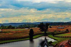 Winery 32 -Loudoun County Virginia Winery and Vineyard