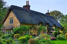 Old English country cottage and garden