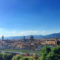 Forgetting Florence (Day 5) – Rated by Hanna