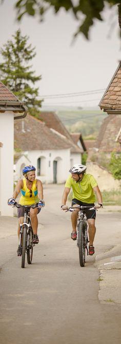 Radfahren: In unmittelbarer Nähe zur Bundeshauptstadt Wien locken im Weinviertel vielfältige Radwege ... Bicycle, Rose Tattoos, Vehicles, Travel, Bike Trails, Bicycling, Explore, Bike, Trips