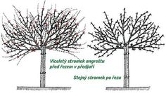 """Fantastic """"metal tree sculpture"""" information is available on our website. Have a look and you wont be sorry you did. Metal Tree Wall Art, Tree Sculpture, Tree Art, Bonsai, Dandelion, Flowers, Plants, Decor, Trees"""