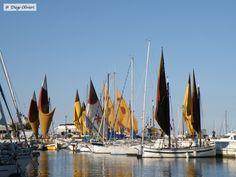 Riccione (RN) - pic by Diego Olivieri - #sea #mare #barche #sky #rimini Sailing Ships, Boat, Sky, Italia, Heaven, Dinghy, Heavens, Boats, Ship