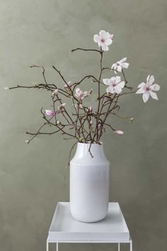 Magnoliablomstene er eksotiske og delikate.