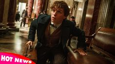 Fantastic Beasts And Where To Find Them Movie Review 2016 | Hot News 247