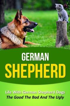 Good training treats for german shepherd puppies