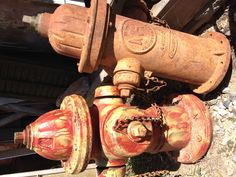 vintage fire hydrants...