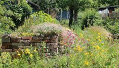 Allotment Gardening, Paradis, Dream Garden, Garden Inspiration, Backyard Landscaping, Garden Plants, Vineyard, Landscape, Nature