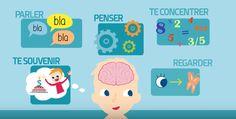 Dans cette vidéo, vous découvrirez donc un excellent support de communication parents/éducateurs/enfants à propos du cerveau.
