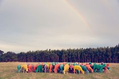 https://www.graymalin.com/index.php/quickshop/index/view/path/rainbow-sheep-i.html