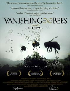 Highly recommend for all gardeners!!!! Vanishing Bees, a film documentary that everyone should watch, if we lose our bees we lose a great percentage of our food!!