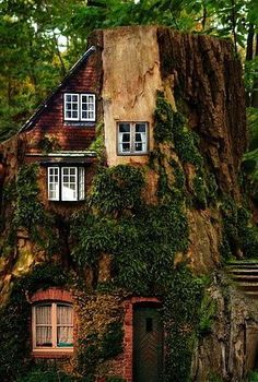 house built into a tree. I sooooo want to live with a tree INSIDE my house! Future House, My House, Cliff House, House Inside, Future City, Beautiful Homes, Beautiful Places, Fairytale House, Crazy Houses