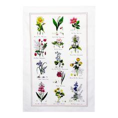 Botanic Garden Viskestykke i Bomuld. b 49 x h 74 cm. #spb #kolonihave #viskestykke #blomster #illustrationer #have