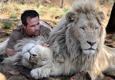 Kevin Richardson - The Lion Whisperer.  Awesome!!!!