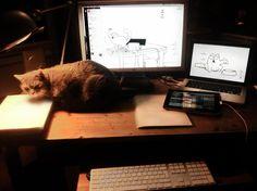 """2ème table de travail de @Louise Merzeau : """"Ma table de travail à Paris (mon chat paraît roux, mais il est gris…""""."""