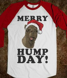 Merry Hump Day #humpday #christmas #camel