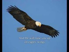 """On Eagle's Wings..In memory of my husband Jim...and for all the M.S. """"Warriors""""...you are loved!"""